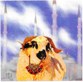 Kurban – žrtva koja donosi Allahov blagoslov